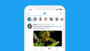According to CNN, Twitter CEO Jack Dorsey has commented that the company is thinking of adding subscription systems to pay for certain functions of its popular social network and that these are in an early phase of exploration.